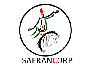 SafranCorp Real Estate Brokers L.L.C logo